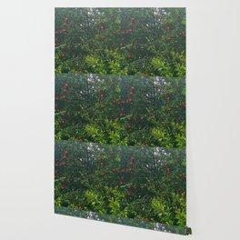 Apple Tree Close Up Wallpaper