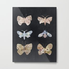 Floral Moths Metal Print