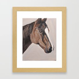 bay horse Framed Art Print