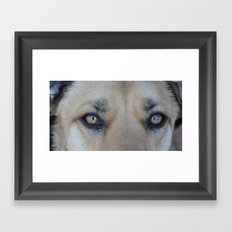 Cooper's Eyes (For Devices) Framed Art Print