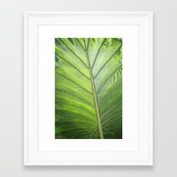 palm Framed Art Prints featuring Palm by ALLY COXON