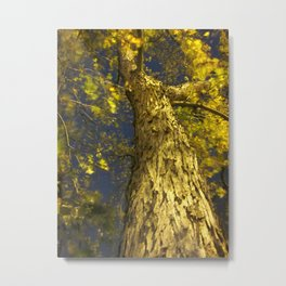 Only God Can Make A Tree Metal Print