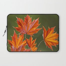 Abstract Maple Leaves Laptop Sleeve