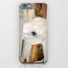 A Glimpse iPhone 6s Slim Case