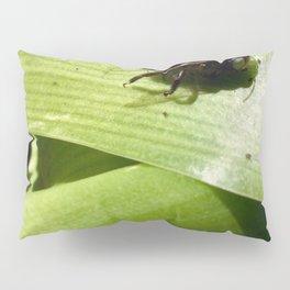 Carpenter bee Pillow Sham