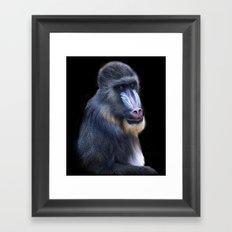 Baboon Portrait Framed Art Print