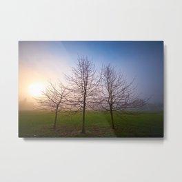 Foggy Morning at Green Lake (Seattle, WA) Metal Print