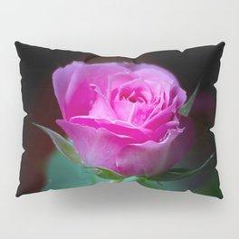 Wet Pink Rose Pillow Sham