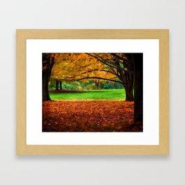 A Walk In The Park - Nature Art Framed Art Print