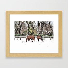 Colts Neck Snow Framed Art Print