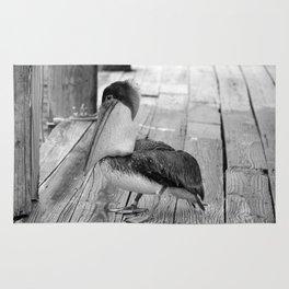 Juvenile Brown Pelican Tale 2 Rug