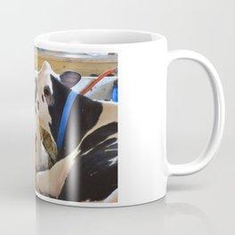Pair of black and white cows 1 Coffee Mug