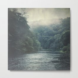 valley and river Metal Print