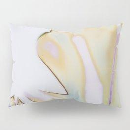 Polaroid Series  Pillow Sham