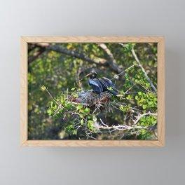 Anhinga Mama Framed Mini Art Print