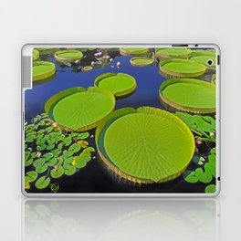 Water Platters Laptop & iPad Skin