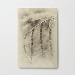 hang around Metal Print