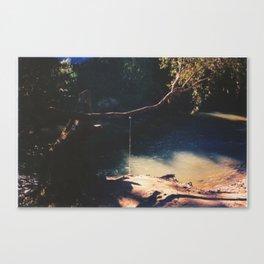 Swimming hole. Canvas Print