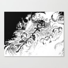 Rose Shadow Canvas Print