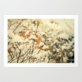 Vintage bush in the Snow Art Print