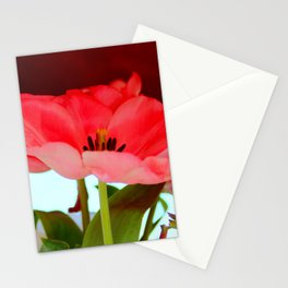 Flat Breed Stationery Cards