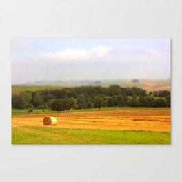 Miniature Countryside Canvas Print