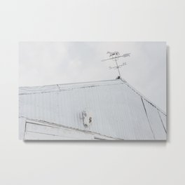 Old Barn with Skull and Weathervane Metal Print
