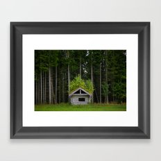 Trees On A Cabin (Norway) Framed Art Print