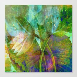 lotus2 Canvas Print