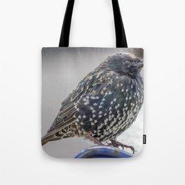 Starling. Tote Bag