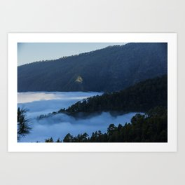 La Palma forest Art Print