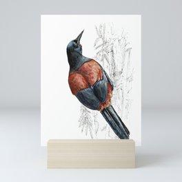 Mr Tieke , New Zealand Saddleback bird Mini Art Print