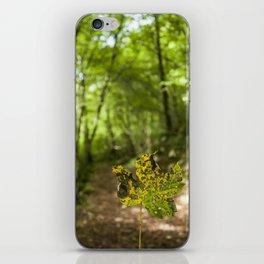 A leaf in the walk path iPhone Skin
