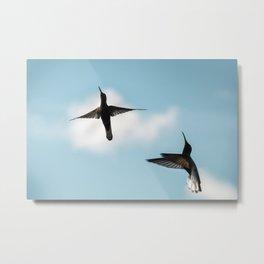 Couple Birds Flying Metal Print