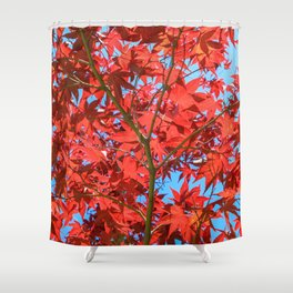 Reds of Fall - 1 Shower Curtain