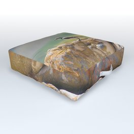 Cape Wagtail Outdoor Floor Cushion