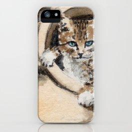 Sweet cat iPhone Case