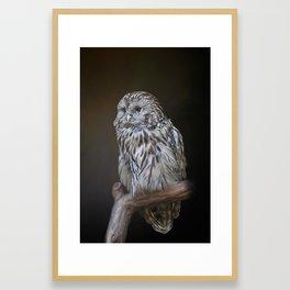 Lovely cute owl Framed Art Print