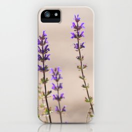 roaming in the garden iPhone Case