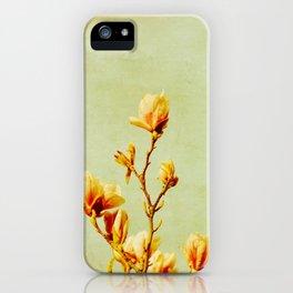 wednesday's magnolias iPhone Case