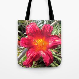 Dew on Crimson Tote Bag
