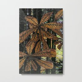 Tree trunks comfort Li Po Metal Print