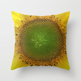 All right, Mr. DeMille, I'm ready for my close-up - Sunflower photography by Jéanpaul Ferro Throw Pillow