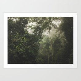 Mantiqueira Ridge nº 4 Art Print