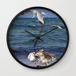 SEAGULLS on the BALTIC SEA Wall Clock