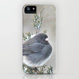 Tip Top Junco iPhone Case