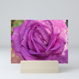 Sardinian Rose Poetry Mini Art Print