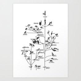 Evolution chart Art Print