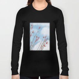 Budding Ocotillo by Murray Bolesta Long Sleeve T-shirt
