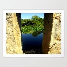 Framing a Pond Art Print